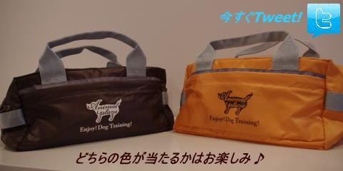 犬のようちえん®駒沢公園教室_ようちえんバッグプレゼント