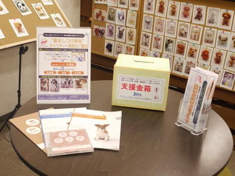 子犬のしつけ教室「犬のようちえん駒沢公園教室」保護犬支援プロジェクト報告3