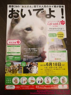 子犬のしつけ教室「犬のようちえん駒沢公園教室」千葉イベント