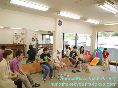 子犬のしつけ教室「犬のようちえん駒沢公園教室」パピーパーティー1