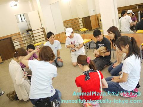 子犬のしつけ教室「犬のようちえん駒沢公園教室」パピーパーティー2