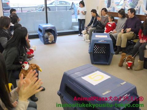 子犬のしつけ教室「犬のようちえん駒沢公園教室」クリスマス