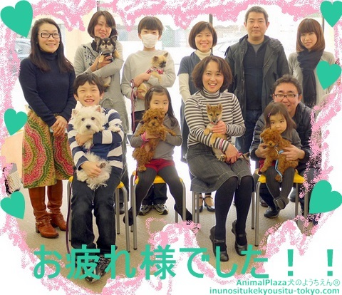 子犬のしつけ教室「犬のようちえん駒沢公園教室」パピーパーティ開催しました!!