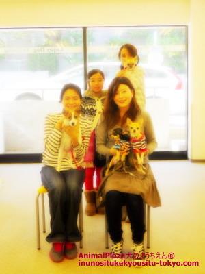 子犬のしつけ教室「犬のようちえん駒沢公園教室」パピーパーティー2012