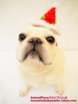 メリークリスマス&ハッピーニューイヤー★