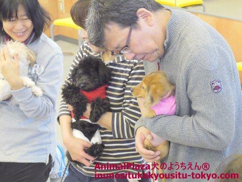 飼い主さんもいろんな犬種に触れ、抱き方の違いなどを実感されていました。