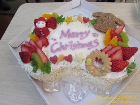 わんちゃん用にケーキを用意しました!